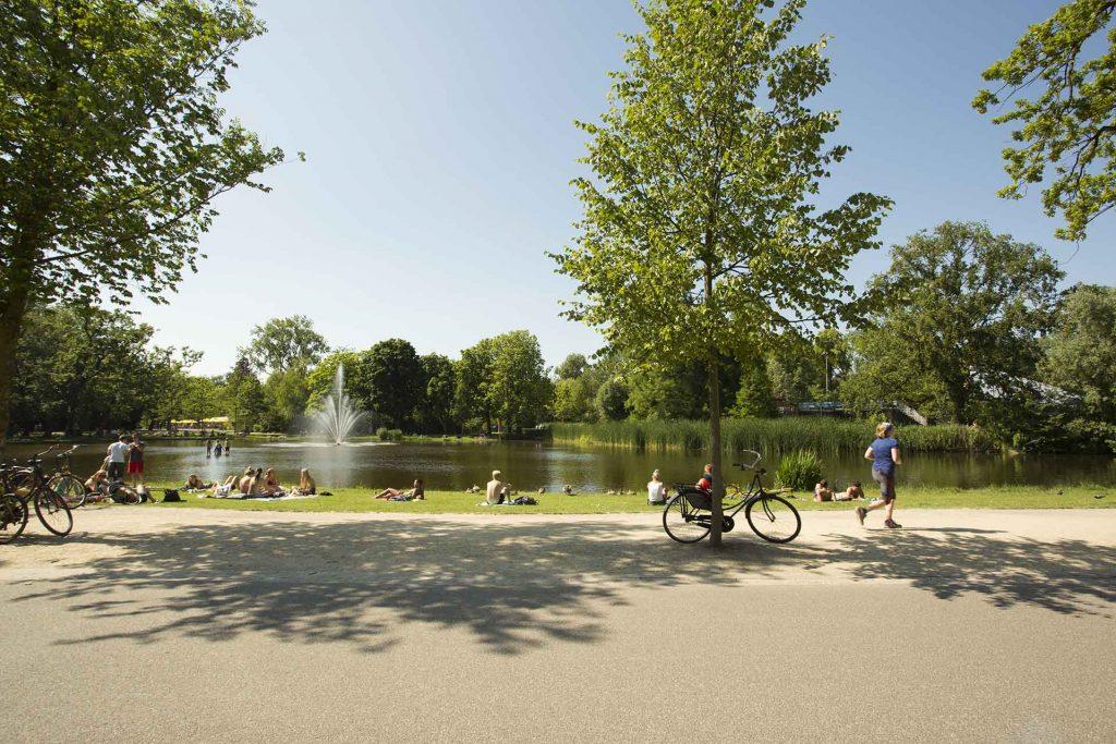Picknick plekken in Amsterdam